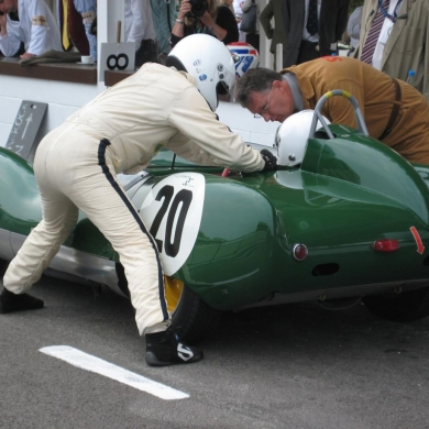 Goodwood 2010 strapping in Whizo